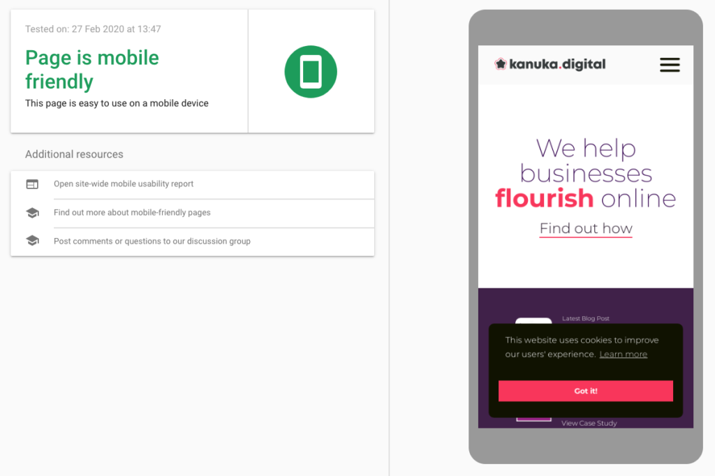 Google's Mobile-Friendly testing tool example